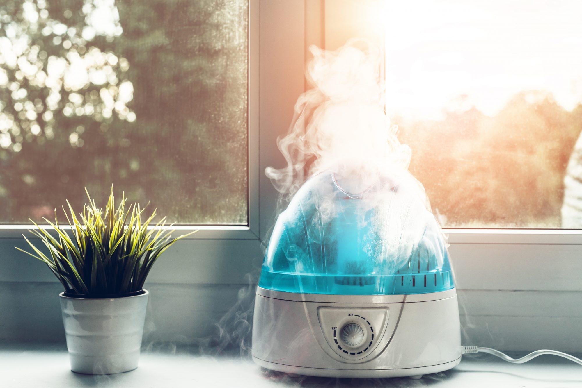 Importância da umidade do ar na sua casa